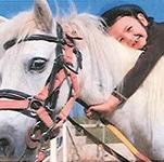 progetto cavalli